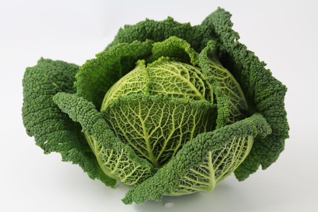 choux-vert-frise-1-p-image-27674-grande